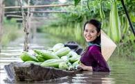 Năm 2016 tăng trưởng âm, nông nghiệp Việt cần làm gì trong năm 2017?