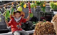 Cam, chuối, ổi, thanh long giúp nông sản Việt xuất khẩu vượt mặt cả dầu thô