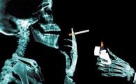 Các CEO ngành thuốc lá luôn nhận lương triệu đô vì... danh dự của họ bị dư luận phỉ báng
