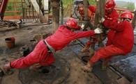 Giá dầu giảm sâu khi cung dầu tại Mỹ tăng gấp 5 lần dự đoán