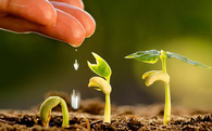 Ngay từ đầu năm, Chính phủ đã nhanh chóng triển khai giải pháp để đạt mục tiêu tăng trưởng 6,7%
