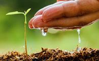 Bộ Nông nghiệp và Phát triển Nông thôn mở 'Hội nghị Diên Hồng', mời hơn 100 nhà khoa học tìm cao kiến