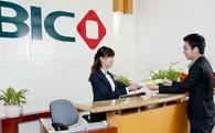 BIC dành tặng nhiều ưu đãi cho khách hàng mua bảo hiểm trực tuyến