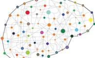 Làm thế nào kết nối những kiến thức trong não bộ lại với nhau để trở nên thông tuệ hơn?