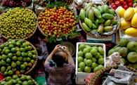 GS.TS Võ Tòng Xuân chỉ ra một rào cản lớn ngăn nông sản Việt Nam tiến ra thế giới!