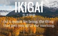 Ikigai - Triết lý làm việc tới già, bí quyết hạnh phúc của người Nhật Bản