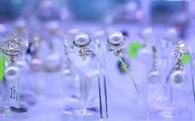 Công nghệ cao sẽ giúp Phú Quốc xuất xưởng hơn 133.000 viên ngọc trai