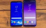 Samsung tự tin xuất xưởng 20 triệu chiếc Galaxy S8 và S8 Plus lô hàng đầu tiên để phục vụ nhu cầu rất lớn của thị trường