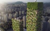 """Trung Quốc sắp có """"khu rừng thẳng đứng"""" đầu tiên tại châu Á: hơn 3.500 cây, tạo ra 60kg oxy mỗi ngày"""