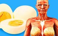 Điều gì xảy ra với cơ thể bạn nếu ăn 2 quả trứng mỗi ngày?