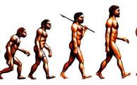10 biểu đồ này sẽ giải thích: Tại sao cả thế giới ngày càng béo?