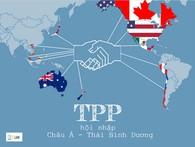 [Infographic] Việt Nam đang ở đâu trong TPP?