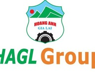Hoàng Anh Gia Lai vẫn đứng thứ 16 danh sách thương hiệu giá trị nhất Việt Nam