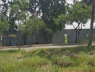 TPHCM: Cận cảnh dự án khu công viên nghìn tỷ đang bị thanh tra toàn diện
