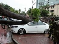 [Chùm ảnh & video] Toàn cảnh về bão số 3 Thần Sét khi đổ bộ vào miền Bắc, nhiều địa phương chìm trong mưa lũ