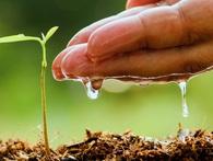 Trước khi có gói tín dụng 50 nghìn tỷ, những đại gia nào tiên phong 'xuống tiền' đầu tư vào nông nghiệp?