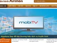 Thủ tướng Chính phủ chỉ đạo thanh tra toàn diện Dự án Mobifone mua 95% AVG