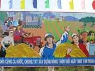 Để đua thành tích nông thôn mới, nhiều tỉnh thành đã vay nợ tới 15.000 tỉ đồng không trả nổi