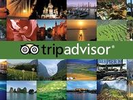 TripAdvisor: Từ công ty không khách hàng, không doanh thu tới đế chế du lịch 6 tỉ USD