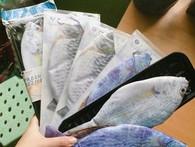Túi đựng bút hình cá xuất xứ Trung Quốc bán tràn lan