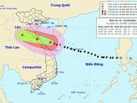 Trưa 15/9, bão số 10 đi vào đất liền các tỉnh từ Nghệ An đến Quảng Trị