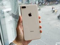 """iPhone 8 Plus đầu tiên đã về Việt Nam: Vỏ kính, màu vàng mới rất """"yêu"""", giá 23 triệu đồng"""
