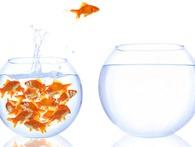 Kỳ I: Marketing chiến lược – bài toán bỏ ngỏ của doanh nghiệp Việt