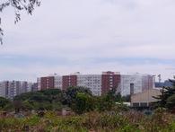 Nghĩa trang lớn nhất TP.HCM giải tỏa làm khu đô thị cao cấp, hàng nghìn người dân vui mừng khôn xiết