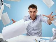 Câu hỏi bất kỳ ai đi làm cũng từng trăn trở: 'Nên làm cho công ty lớn hay công ty nhỏ?'