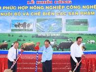 Thêm một dự án chăn nuôi bò sữa 3.000 tỷ đồng vừa được Thủ tướng nhấn nút khởi công