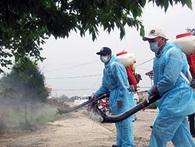 Viện Vệ sinh dịch tễ lý giải việc phun thuốc xong lại nhiều muỗi như thường!