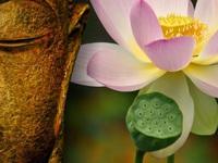 Xử lý khủng hoảng truyền thông theo tinh thần Phật giáo