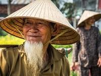 Chuyện Việt Nam ồ ạt nhập đùi gà đông lạnh của Mỹ, Hàn cho tới lối thoát cuối cùng của nền nông nghiệp nước ta