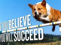 Dù 6/10 phương án thất bại, bạn vẫn có cơ hội thành công nhờ 3 bí quyết sau