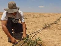 Không giàu tài nguyên như Việt Nam, đến nước cũng thiếu, Israel đã 'buộc' phải trở thành quốc gia khởi nghiệp
