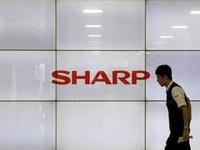 Chính phủ Nhật do dự, Sharp có thể về tay Foxconn