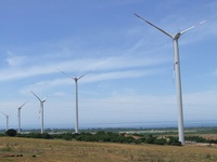 Việt Nam sẽ có điện gió kết hợp du lịch sinh thái