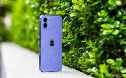 Cận cảnh iPhone 12 màu tím mộng mơ