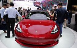 Ngoan như Tesla còn bị dạy bảo cho tới bến tại Trung Quốc