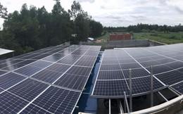 Lithaco liên kết Hdbank tài trợ đến 100% cho doanh nghiệp lắp điện mặt trời áp mái
