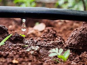 Con đường thoát hạn: Giải pháp Israel cho một thế giới khát nước