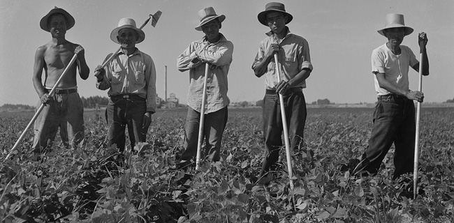 Người châu Á tại Mỹ, từ dân lao động rẻ mạt tới sự thèm muốn của các tập đoàn
