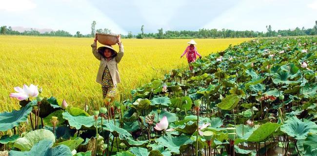 """Là địa phương thuần nông, không thắng cảnh đẹp nhưng tỉnh này vẫn vượt qua Hà Nội, Bình Dương trong mắt giới kinh doanh nhờ """"một ông Bí thư hay cười""""!"""