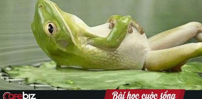 Câu chuyện con ếch và nồi nước sôi: Nếu cứ đứng yên một chỗ, không sớm thì muộn bạn sẽ bị đào thải