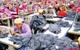 HSBC: Giờ là thời của xuất khẩu dịch vụ, không phải xuất khẩu hàng hóa!