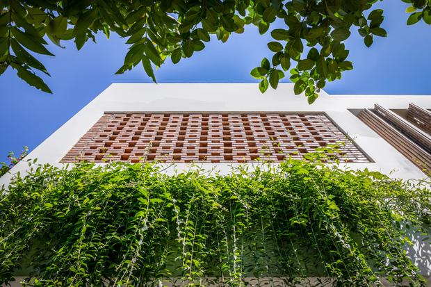 Ngôi nhà 125m2 đẹp như resort của cặp đôi yêu nhau từ cấp ba, đầu tư 2 tỷ với thiết kế đưa gió vào mọi ngóc ngách - Ảnh 3.