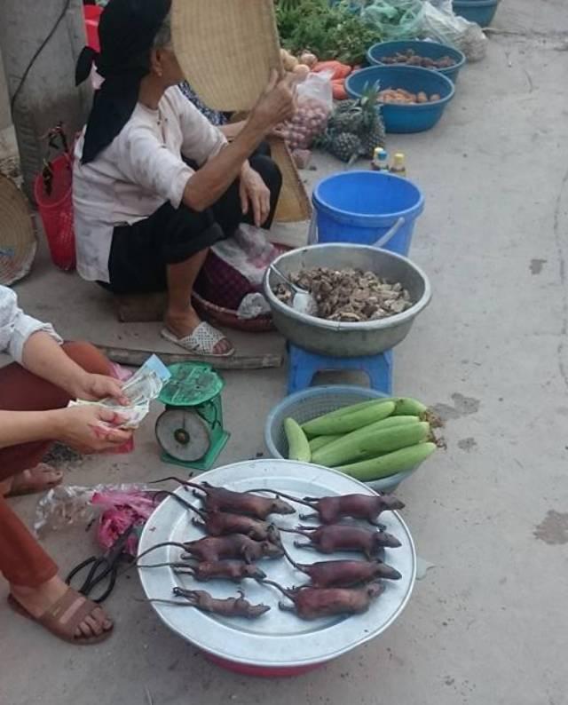 Chuột đồng vào mùa, người buôn thịt chuột ở làng ven đô Hà Nội hốt bạc từng ngày - Ảnh 3.
