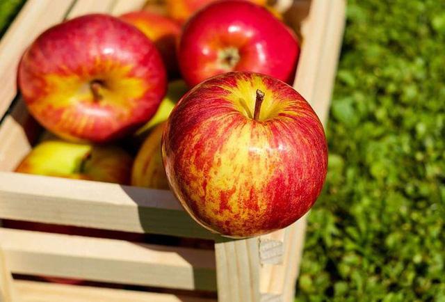 4 loại thực phẩm bán đầy ngoài chợ được ví là thần dược làm thông máu, ăn mỗi ngày một ít có thể ngăn ngừa nhồi máu cơ tim  - Ảnh 2.