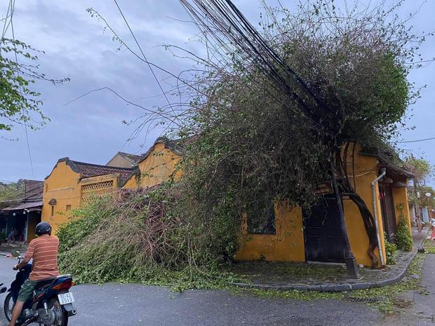 Khung cảnh Hội An xơ xác sau cơn bão số 9, một biểu tượng du lịch bị vùi dập khiến du khách quặn lòng - Ảnh 10.