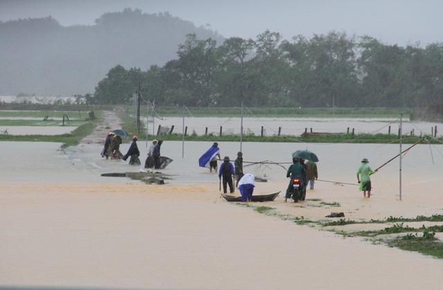 [Ảnh] Cận cảnh điểm sạt lở kinh hoàng chia cắt Quốc lộ 46, dân liều mình đứng giữa dòng lũ bắt cá ở Nghệ An - Ảnh 8.